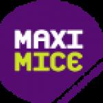 логотип maxi mice