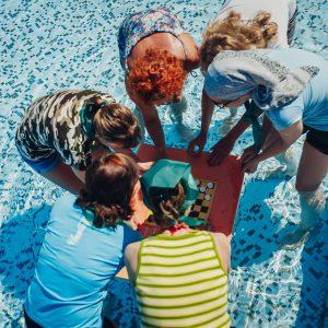 Квест на территории Swissôtel Resort Сочи Камелия
